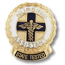 Nursing Lapel Pin Assistant State Tested Nurse Professional Medical Emblem