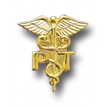 Physical Therapist PT Caduceus Professional Medical Lapel Pin 805 All Gold Plated