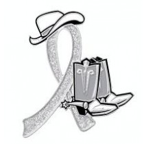 Brain Disabilities Awareness Month is May Glitter Gray Ribbon Cowboy Cowgirl Boots Hat Lapel Pin