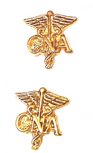 CNA Caduceus Pin Tacs Set of 2 Certified Nurses Assistant Aide Nursing